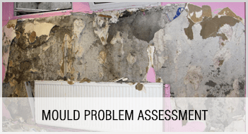Mould Problem Assessment