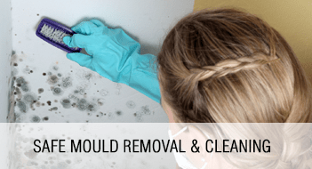 Safe Mould Removal & Cleaning